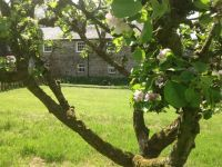 Orchard Cottage, Galloway House Gardens